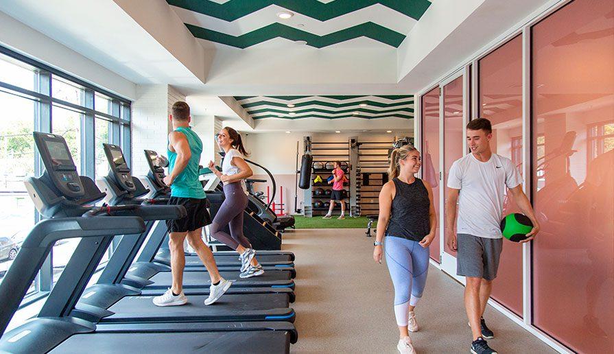 Health + Wellness gallery image 6